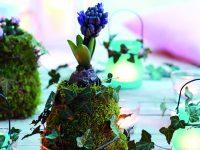 Váza z mechu