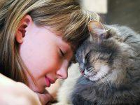 Kočičí důkazy lásky