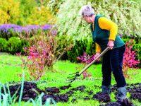 Tipy pro správné hnojení