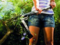 Péče o jarní trávník