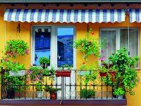 Proměňte balkon v kvetoucí zahradu