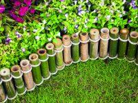Bambus a rákos v zahradě