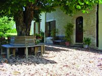 Kruhová lavička pod košatý strom