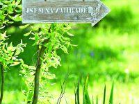 Šipka do zahrady