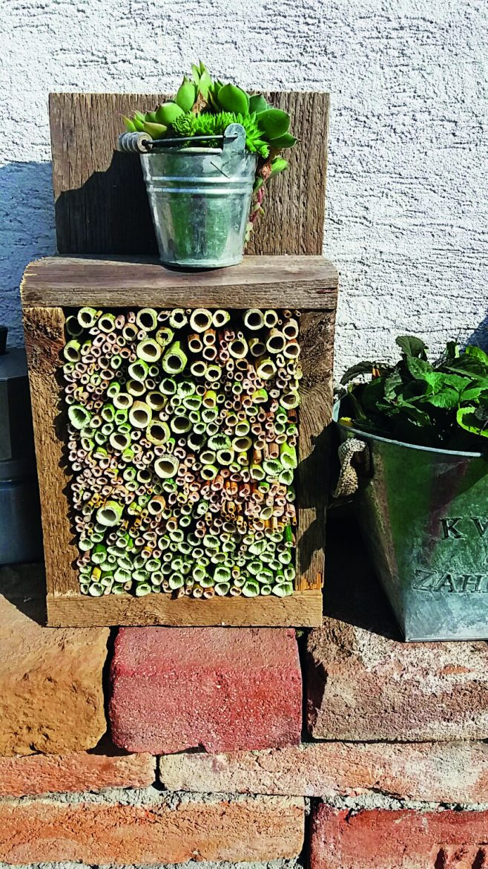 Domček pre včely