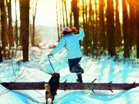 Zimní péče o psí srst