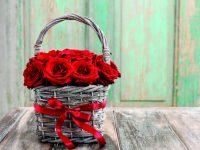 Košík plný růží