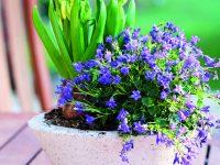 Betonové květináče
