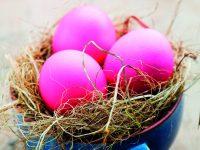 Velikonoční hnízdečka