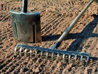 Jak na přípravu půdy