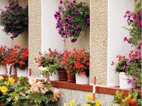 Květinové stěny