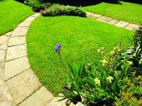 Chodníček v zahradě