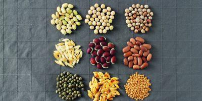 Co dělat se semeny před výsevem?