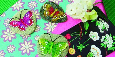 Motýli na kamenech