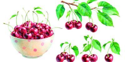 Ovocné šťávy našich prababiček