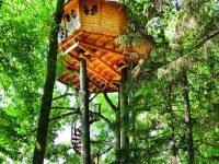 Chata v korunách stromů