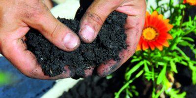 Kompost pro lepší úrodu